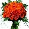 24 rose arancio