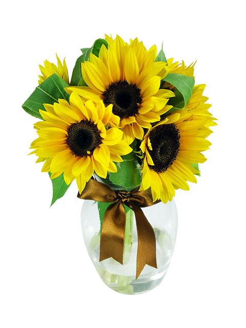 bouquet di tre girasoli